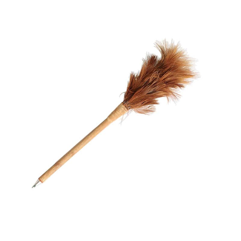 TIDY GUY'S FEATHER DUSTER