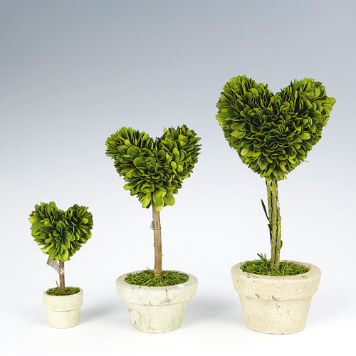 TOPIARY HEART-M