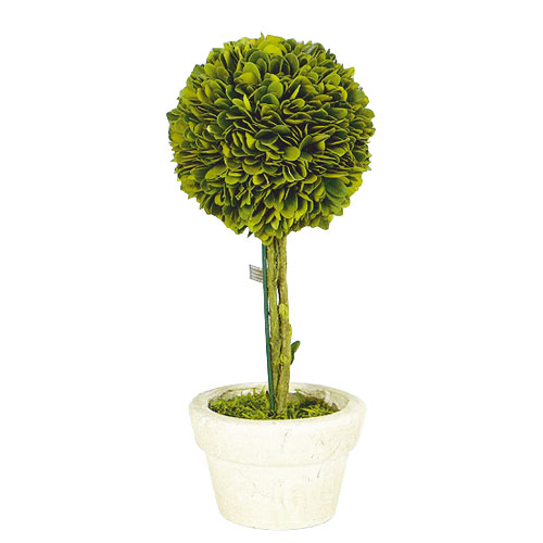 TOPIARY BALL-L